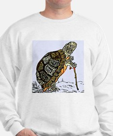 Our wise old friend the turtle Sweatshirt
