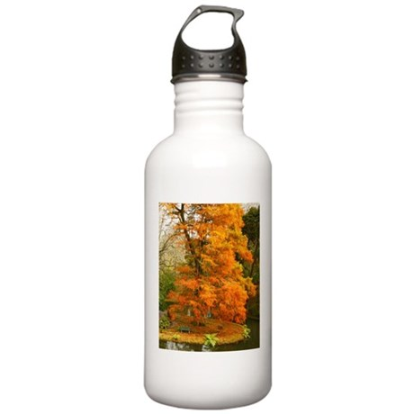 Willow in Autumn colors Water Bottle