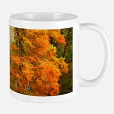 Willow in Autumn colors Mug