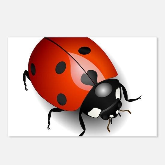 Shiny Ladybug Postcards (Package of 8)