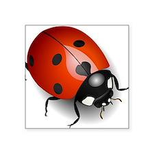 Shiny Ladybug Sticker