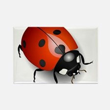Shiny Ladybug Rectangle Magnet