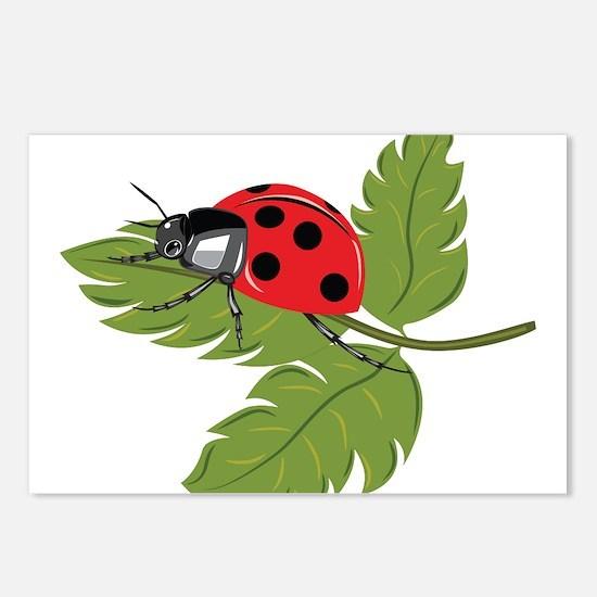 Ladybug on Leaf Postcards (Package of 8)