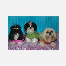 Shih Tzu Spring Easter Valentine Watercolor Rectan