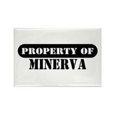 Property of Minerva Rectangle Magnet