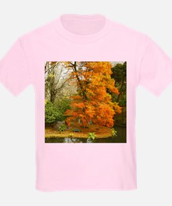 Willow in Autumn colors T-Shirt