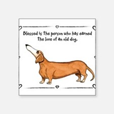 Old dog Love Sticker