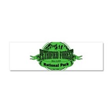petrified forest 2 Car Magnet 10 x 3
