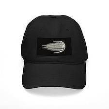 Haeckel Trilobite Baseball Hat