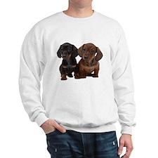 Dachshunds Sweatshirt