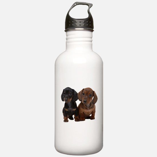 Dachshunds Sports Water Bottle
