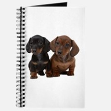 Dachshunds Journal