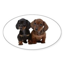Dachshunds Decal