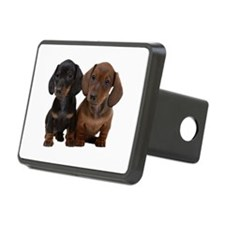 Dachshunds Hitch Cover