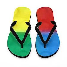 Color Blocks Flip Flops