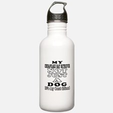 Chesapeake Bay Retriever not just a dog Sports Water Bottle