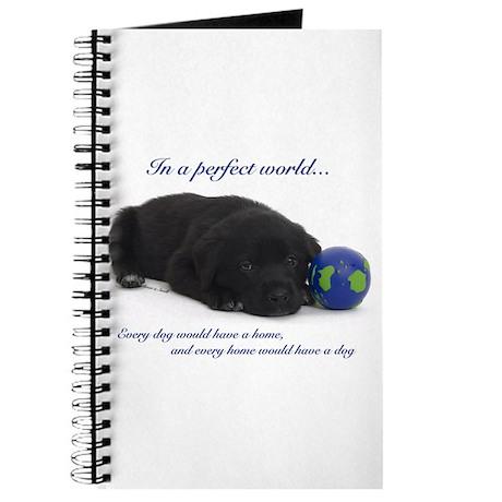BlackLabPup_PerfectWorld1d.png Journal