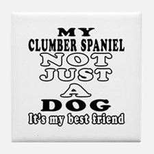 Clumber Spaniel not just a dog Tile Coaster