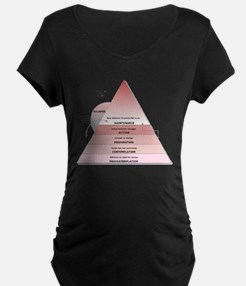 Stages of Change Maternity T-Shirt