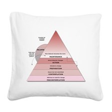 Stages of Change Square Canvas Pillow