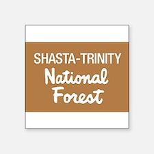 Shasta-Trinity National Forest (Sign) Sticker