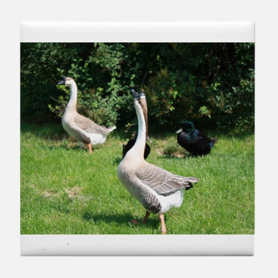 TWO GEESE Tile Coaster