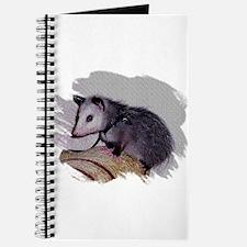 Baby Possum Journal