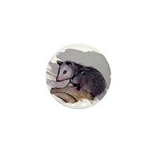 Baby Possum Mini Button (10 pack)