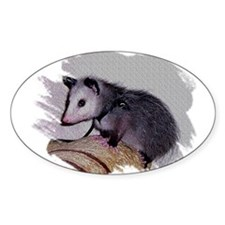 Baby Possum Oval Decal
