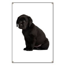 Labrador Retriever Banner