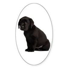 Labrador Retriever Decal