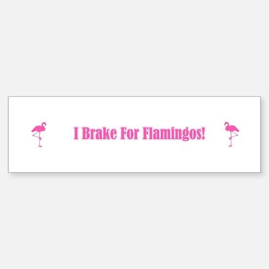 I Brake For Flamingos Bumper Bumper Stickers