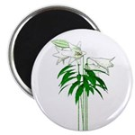"""White Lillies 2.25"""" Magnet (10 pack)"""
