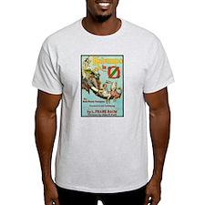 Kabumbo in Oz Ash Grey T-Shirt