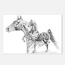 Saddlebred  Postcards (Package of 8)