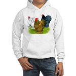 Assorted Cochins Hooded Sweatshirt