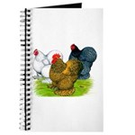 Assorted Cochins Journal