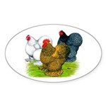 Assorted Cochins Oval Sticker