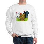 Assorted Cochins Sweatshirt