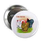 Cochins Trio Button