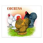 Cochins Trio Small Poster