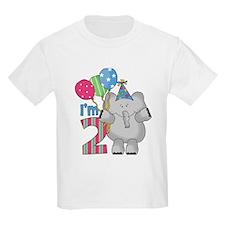Lil Elephant 2nd Birthday T-Shirt