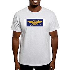 F-14 Tomcat VF-213 Blacklions Ash Grey T-Shirt