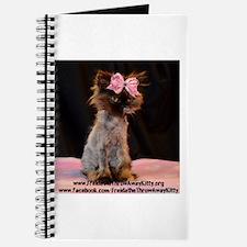 Freida%2c the throw away kitty Journal