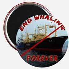 End Whaling Forever Magnet