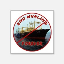 "End Whaling Forever Square Sticker 3"" x 3"""