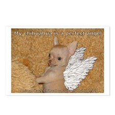 My Chihuahua is a perfect Angel Postcards (Package