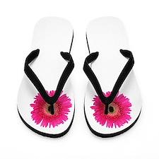 Hot Pink Gerbera Daisy Flip Flops
