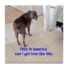 Resue Dog Love
