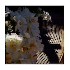 rose in morning light2 Tile Coaster